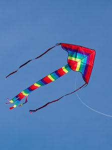 Somrig bild av en flygande drake